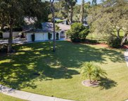 3031 Harvest Moon Drive, Palm Harbor image