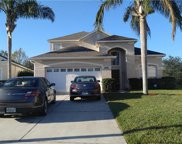 8134 Fan Palm Way, Kissimmee image