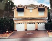 10605 Hatteras Drive, Tampa image