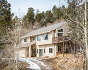 11763 Braun Way, Conifer image