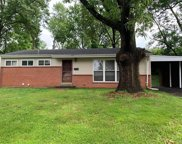 8808 Iroquois Drive, Olivette image