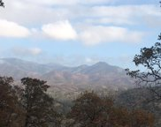 Cottonwood Creek, Ono image