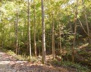 LT 12 Ansley Lane, Blairsville image