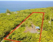 14-3596 GOVERNMENT BEACH RD, PAHOA image