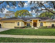 11506 Humber Place, Temple Terrace image