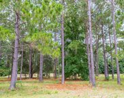 1457 Whooping Crane Dr., Conway image