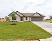 218 Little Tree Court, Tolar image