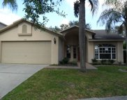 1242 Salt Clay Court, Wesley Chapel image