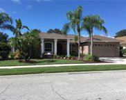 566 Pine Ranch East Road, Osprey image