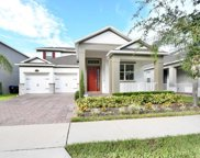 15343 Murcott Harvest Loop, Winter Garden image