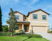 9306 Blueberry Ash Circle, Riverview image
