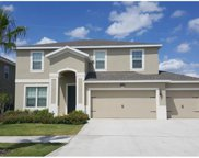 12208 Dusty Miller Place, Riverview image