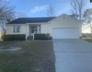 193 Dove Trace Drive, West Columbia image
