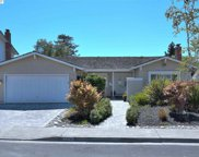 2356 Night Shade Ln, Fremont image