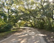 Cherry Point Road, Wadmalaw Island image