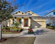 5229 Admiral Pointe Drive, Apollo Beach image