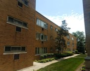 2024 West 111Th Street Unit 2S, Chicago image