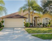 10808 Piping Rock Circle, Orlando image