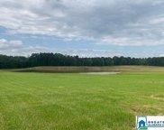 Co Rd 467 Unit 135 acres, Vincent image