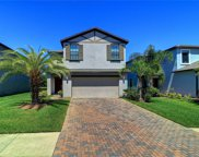 20042 Date Palm Way, Tampa image