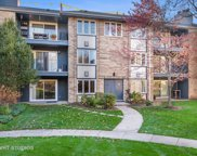 2031 Ammer Ridge Court Unit 101, Glenview image
