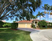 2481 Eagle Watch Ct, Weston image