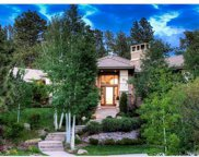 790 International Isle Drive, Castle Rock image