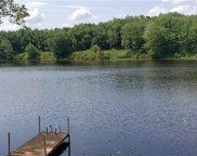 100 Lake  Drive, Swan Lake image