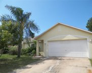 316 Brimming Lake Road, Minneola image
