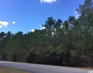 Lot 10 - B Red Wolf Trail, Myrtle Beach image