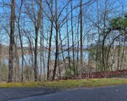 LT 14 Sutton Cove, Hiawassee image