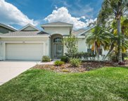 539 Harbor Grove Circle, Safety Harbor image