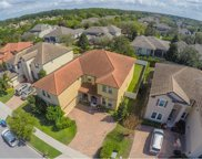 6228 Roseate Spoonbill Drive, Windermere image