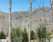 10 Buck Creek Trail, Travelers Rest image
