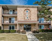 8118 169Th Street Unit 1W, Tinley Park image