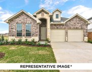 1608 Cherry Blossom Court, Wylie image