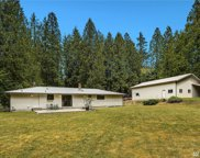 24819 SE Tiger Mountain Rd, Issaquah image
