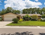 1114 Pelican Place, Safety Harbor image