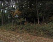 16-016 Peach Tree Road, Auburn image