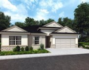 1608 Pilchard Court, Poinciana image