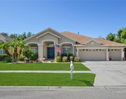 18122 Royal Forest Drive, Tampa image