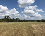 TRACT 1 Fm 3358, Gilmer image