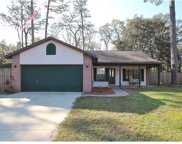 23954 Forest Place, Land O Lakes image