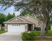 6242 Crickethollow Drive, Riverview image