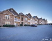 190 Eli Hartley Drive Unit 203, Boone image