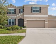 10021 Smarty Jones Drive, Ruskin image