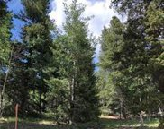 11342 Conifer Mountain Road, Conifer image