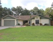 2544 Victarra Circle, Lutz image