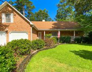 1013 Crooked Stick Court, Summerville image
