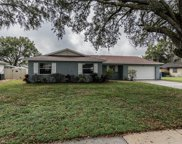 603 Pawn Way, Seffner image